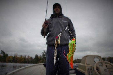 The pike were chomping up the spinner baits