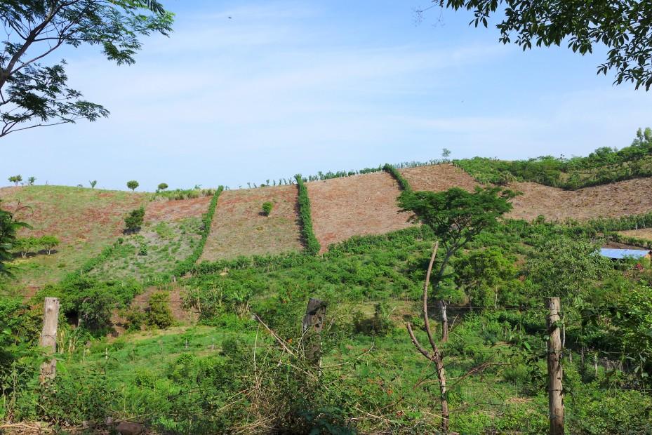 farm lands dot the hillsides