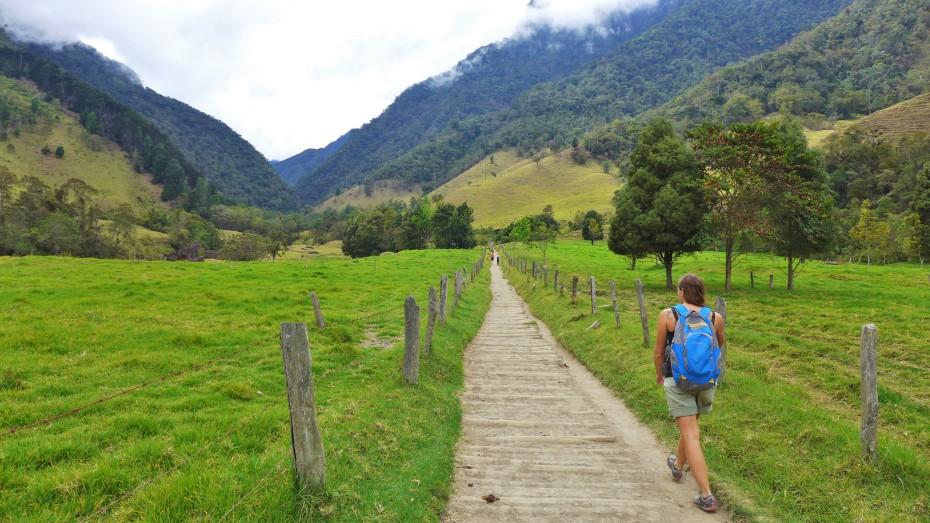 trekking Cocora valley