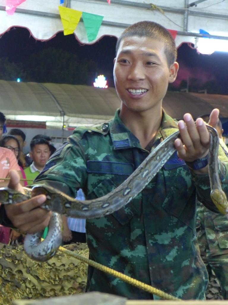 wanna pet my pet snake.... nope I don't!!