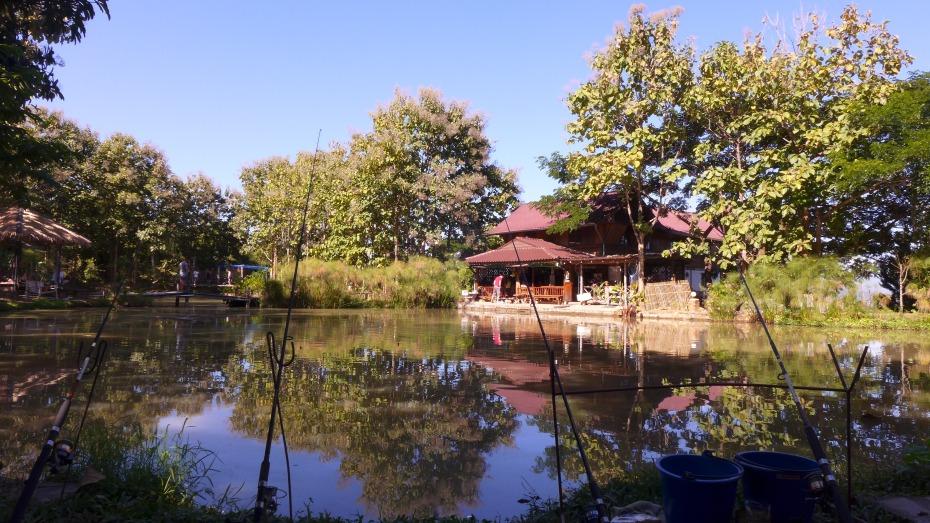 Piranha park pond fishing
