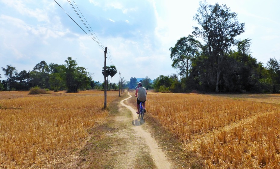 Pedaling through the dry rice paddies around Don Det